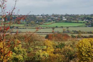 Lacey Green from Lodge Hill
